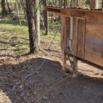conseils pour construire un poulailler connecté